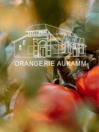 Referenz Website Orangerie Aukamm